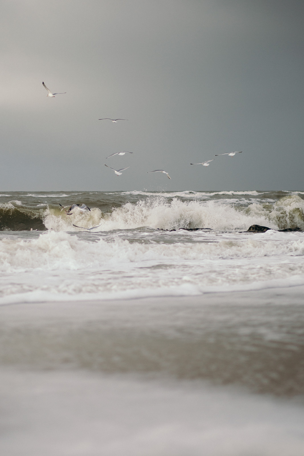 nordsee TLRS.ME